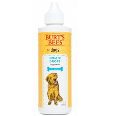 Burts Bees Breath Drops with Peppermint