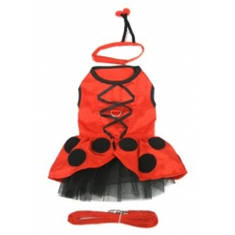 Lady Bug Fairy Costume