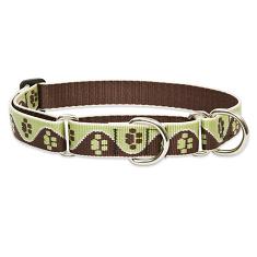Lupine Large Dog Combo Collar
