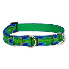 Lupine Pet Tail Feathers Combo Collar