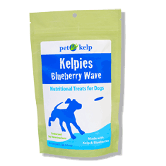 Pet Kelp Kelpies Blueberry Wave