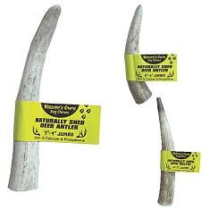 Best Buy Bones American Jumbo Elk Antler