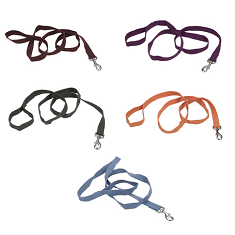 Coastal Pet Earth Soy Leash