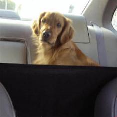 Kyjen Front Seat Barrier