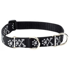 Lupine Pet Bling Bonz Combo Collar