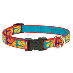 Lupine Pet Crazy Daisy Collar