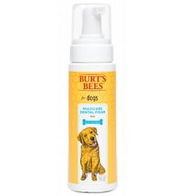 Burts Bees Multicare Dental Foam with Mint