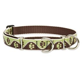 Lupine Large Dog Combo Collar