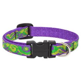 Lupine Pet Big Easy Collar