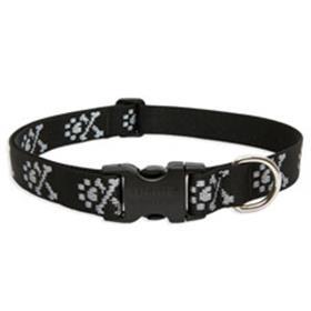 Lupine Pet Bling Bonz Collar