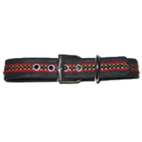 Navy Blue Red Collar