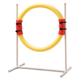 PetSafe Ring Jump