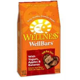 Wellness WellBars Fruit and Yogurt