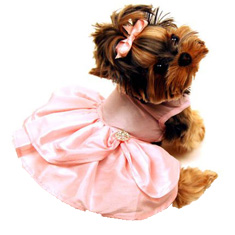 Monkey Daze Pink Taffeta Dress