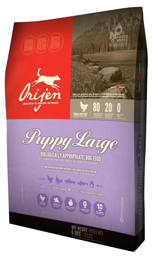 Orijen Large Breed Puppy 80 20 Formula