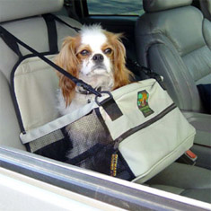 Outward Hound Pet Look Out Car Booster Seat Deluxe